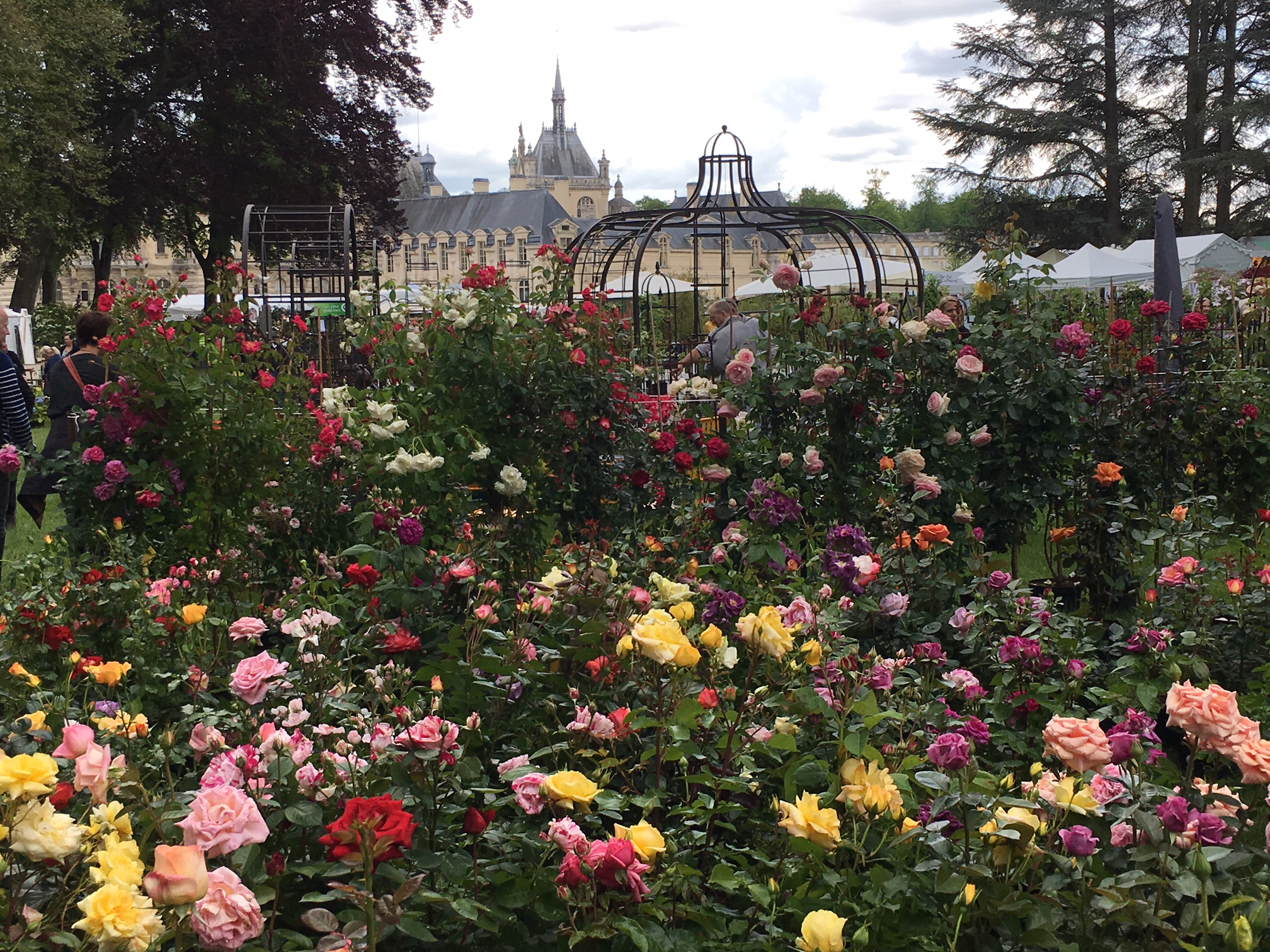 Chantilly the french chelsea les journ es des plantes heritage touring - Journee des plantes chantilly ...